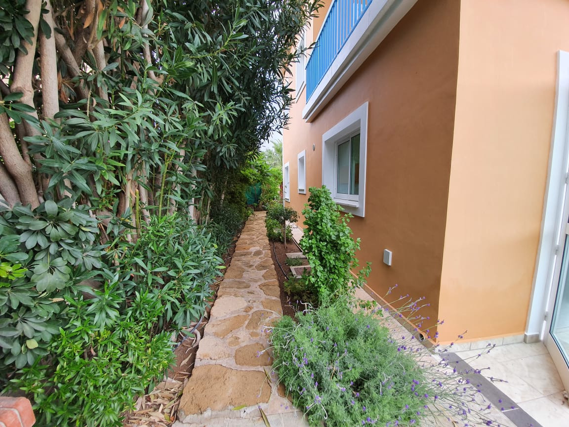FC-28350: House (Detached) in Chlorakas, Paphos for Sale - #11